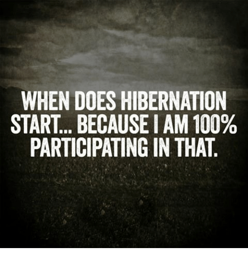 Doe, Funny, and Hibernate: WHEN DOES HIBERNATION  START... BECAUSEIAM 100%  PARTICIPATING IN THAT