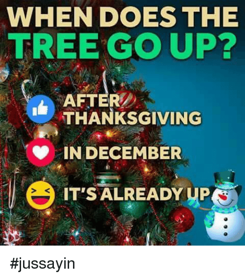 dank trees and when does the tree go up after thanksgiving - When Does The Christmas Tree Go Up