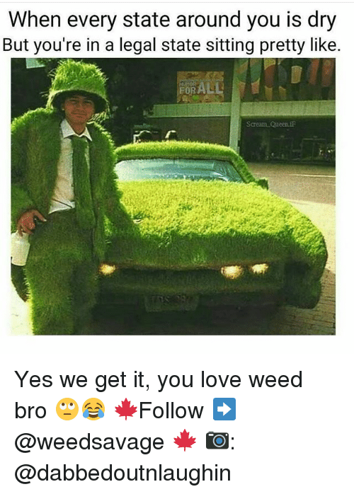Love, Memes, and Weed: When every state around you is dry  But you're in a legal state sitting pretty like.  EORALL  Saream Queen. Yes we get it, you love weed bro 🙄😂 🍁Follow ➡ @weedsavage 🍁 📷: @dabbedoutnlaughin