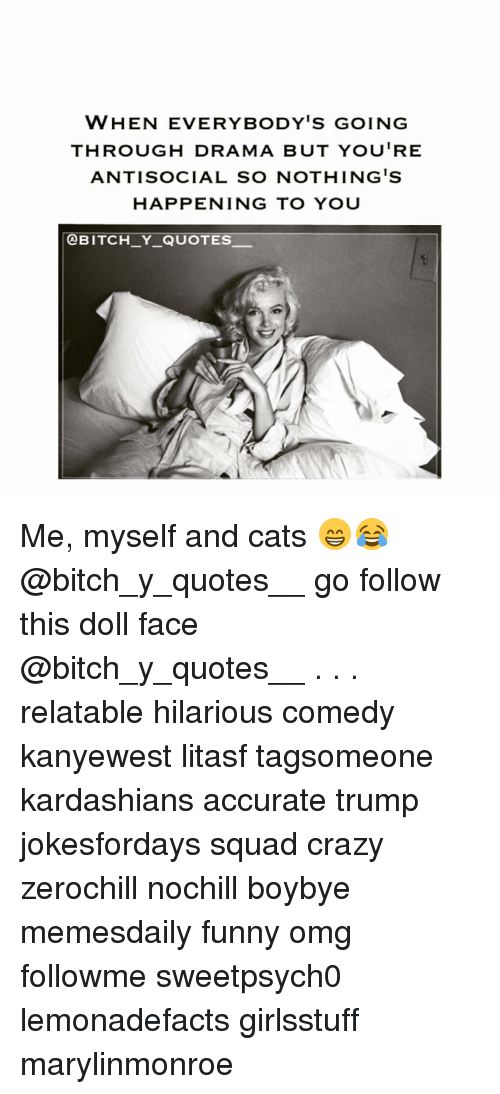 Memes, Antisocial, and 🤖: WHEN EVERYBODY'S GOING  THROUGH DRAMA BUT YOU'RE  ANTISOCIAL SO NOTHING IS  HAPPENING TO YOU  OBITCH Y QUOTES. Me, myself and cats 😁😂 @bitch_y_quotes__ go follow this doll face @bitch_y_quotes__ . . . relatable hilarious comedy kanyewest litasf tagsomeone kardashians accurate trump jokesfordays squad crazy zerochill nochill boybye memesdaily funny omg followme sweetpsych0 lemonadefacts girlsstuff marylinmonroe