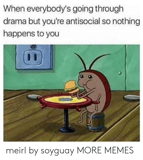Dank, Memes, and Target: When everybody's going through  drama but you're antisocial so nothing  happens to you meirl by soyguay MORE MEMES