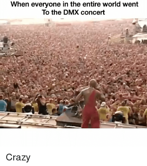 Dmx, Funny, and  Concert: When everyone in the entire world went  To the DMX concert Crazy