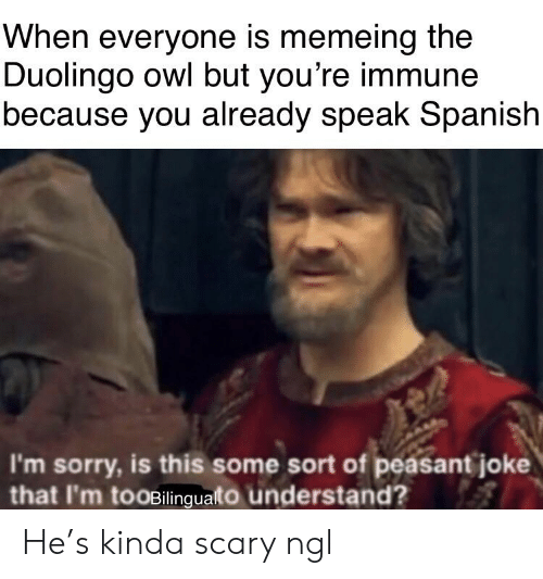 Reddit, Sorry, and Spanish: When everyone is memeing the  Duolingo owl but you're immune  because you already speak Spanish  I'm sorry, is this some sort of peasant joke  that I'm tooBilinguato understand He's kinda scary ngl