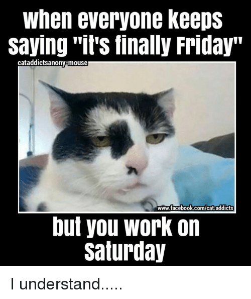 """Facebook, Friday, and Memes: When everyone keeps  Saying its finally Friday""""  cataddictsanony-mouser  www.facebook.com/cat addicts  but you work on  Saturday I understand....."""