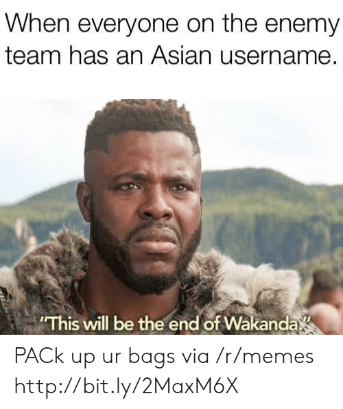 Asian, Memes, and Http: When everyone on the enemy  team has an Asian username.  This will be the end of Wakanda PACk up ur bags via /r/memes http://bit.ly/2MaxM6X