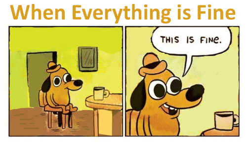 When Everything Is Fine THIS IS FINe   Fine Meme on ME.ME