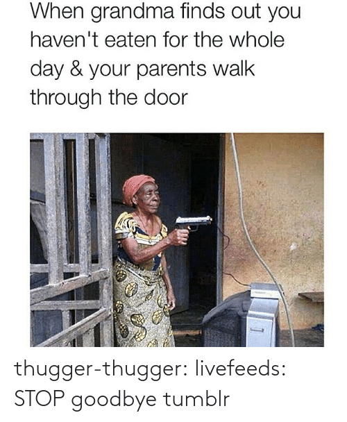 Grandma, Parents, and Tumblr: When grandma finds out you  haven't eaten for the whole  day & your parents walk  through the door thugger-thugger:  livefeeds:  STOP  goodbye tumblr