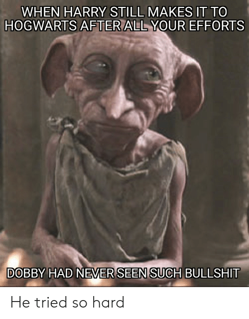 Bullshit, Never, and Hogwarts: WHEN HARRY STILL MAKES IT TO  HOGWARTS AFTER ALL YOUR EFFORTS  DOBBY HAD NEVER SEEN SUCH BULLSHIT He tried so hard