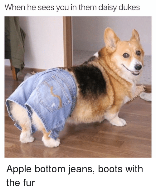 Apple Bottom Jeans Boots - Xtellar Jeans