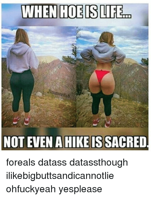 when hoe is life name not evenahikeissacred foreals datass datassthough 18303807 ✅ 25 best memes about hoe is life hoe is life memes,Meme Life