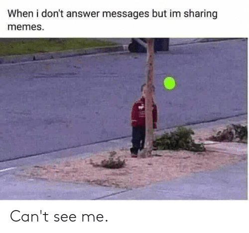 Dank, Memes, and 🤖: When i don't answer messages but im sharing  memes. Can't see me.