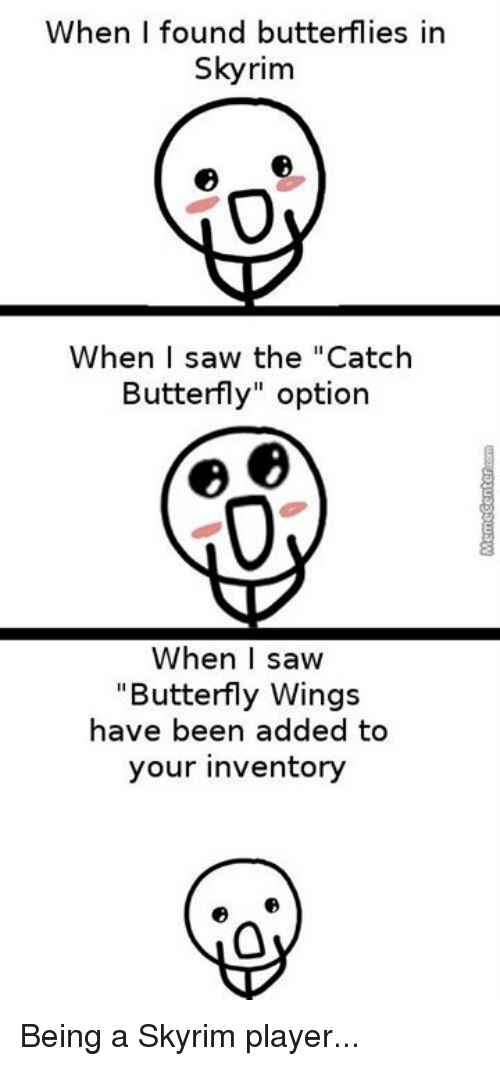 When I Found Butterflies in Skyrim When I Saw the Catch