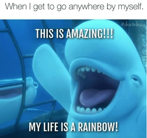 Life, Rainbow, and Amazing: When I get to go anywhere by myself  ecpsetoclassy  THIS IS AMAZING!!!  MY LIFE IS A RAINBOW!