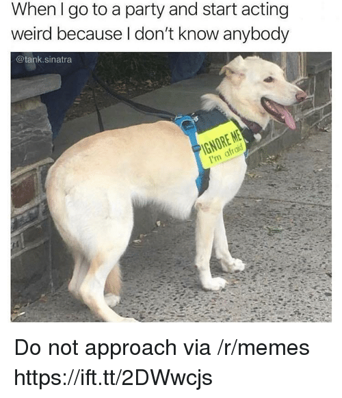 Memes, Party, and Weird: When I go to a party and start acting  weird because I don't know anybody  @tank.sinatra Do not approach via /r/memes https://ift.tt/2DWwcjs