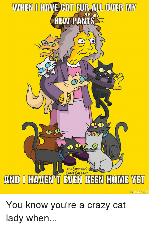 Crazy, The Simpsons, and Home: WHEN I HAVE CAT FUR ALL OVER MY