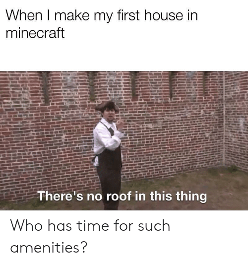 Minecraft, House, and Time: When I make my first house in  minecraft  There's no roof in this thing Who has time for such amenities?
