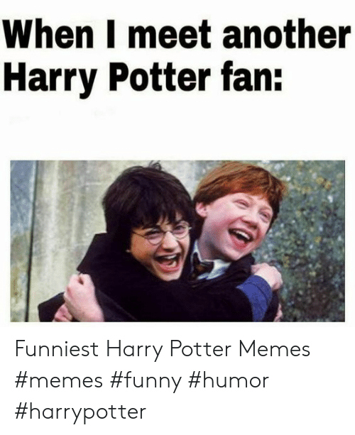 Funny, Harry Potter, and Memes: When I meet another  Harry Potter fan: Funniest Harry Potter Memes  #memes #funny #humor #harrypotter