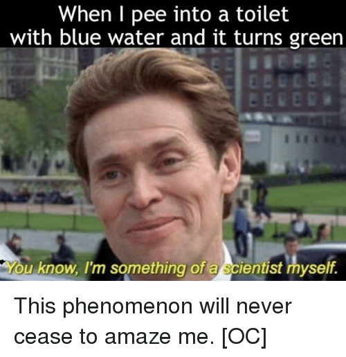 Blue, Water, and Never: When I pee into a toilet  with blue water and it turns green  u know, I'm something of a scientist myself. This phenomenon will never cease to amaze me. [OC]