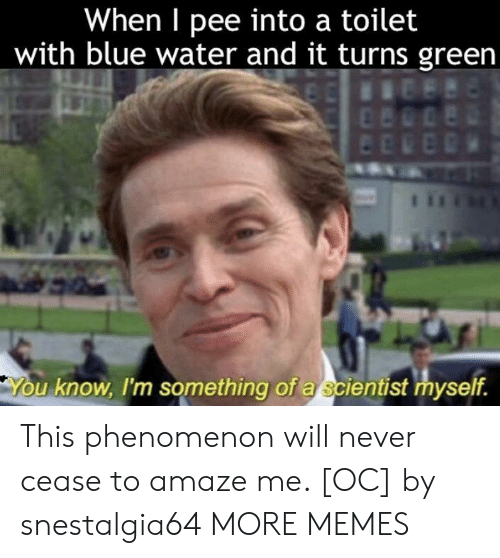Dank, Memes, and Target: When I pee into a toilet  with blue water and it turns green  u know, I'm something of a scientist myself. This phenomenon will never cease to amaze me. [OC] by snestalgia64 MORE MEMES