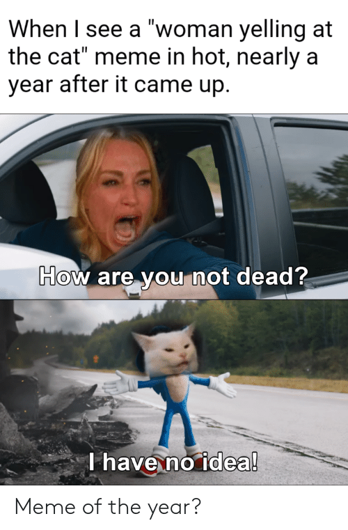 """Meme, How, and Idea: When I see a """"woman yelling at  the cat"""" meme in hot, nearly a  year after it came up.  How are you not dead?  T have no idea! Meme of the year?"""