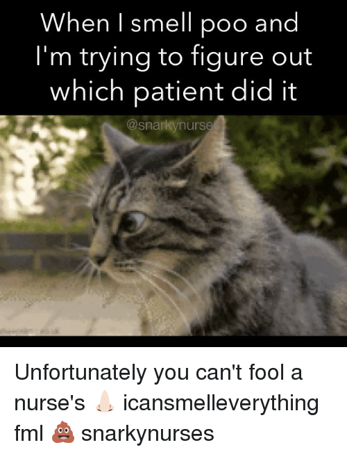 Fml, Memes, and Smell: When I smell poo and  I'm trying to figure out  which patient did it  @snarkynurse Unfortunately you can't fool a nurse's 👃🏻 icansmelleverything fml 💩 snarkynurses