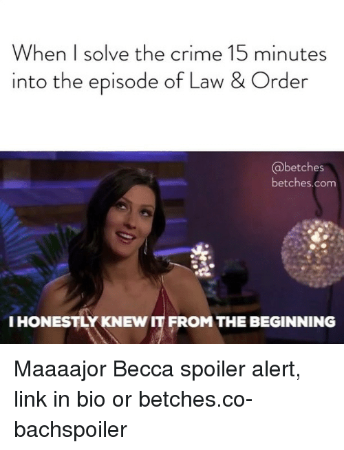 Crime, Link, and Girl Memes: When I solve the crime 15 minutes  into the episode of Law & Order  @betches  betches.com  I HONESTLY KNEW IT FROM THE BEGINNING Maaaajor Becca spoiler alert, link in bio or betches.co-bachspoiler