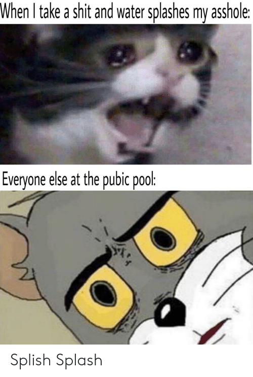 Shit, Pool, and Water: When I take a shit and water splashes my asshole:  Everyone else at the pubic pool: Splish Splash