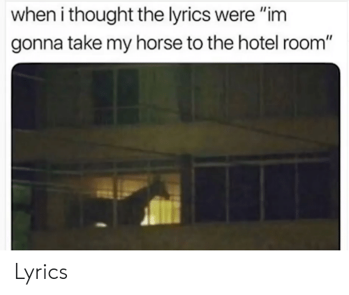 Take My Horse To The Hotel Room Song