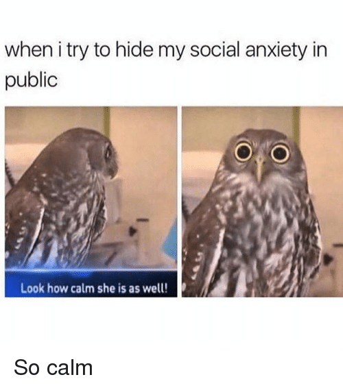 Funny, Anxiety, and Girl Memes: when i try to hide my social anxiety in  public  Look how calm she is as well! So calm