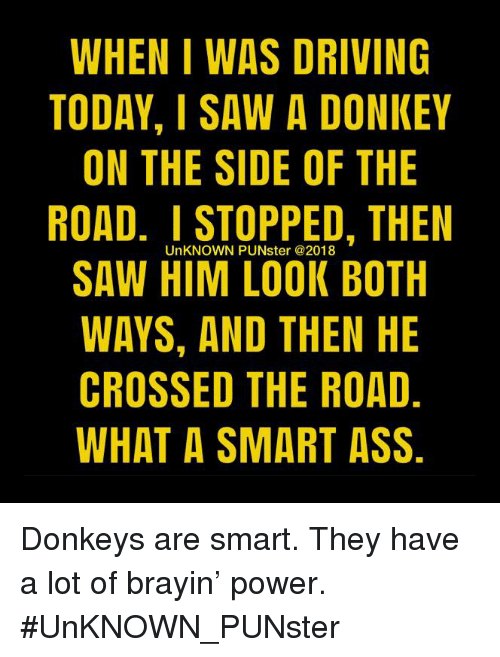 Ass, Donkey, and Driving: WHEN I WAS DRIVING  TODAY, I SAW A DONKEY  ON THE SIDE OF THE  ROAD. I STOPPED, THEN  SAW HIM LOOK BOTH  WAYS, AND THEN HE  CROSSED THE ROAD  WHAT A SMART ASS.  UnKNOWN PUNster @2018 Donkeys are smart. They have a lot of brayin' power.  #UnKNOWN_PUNster