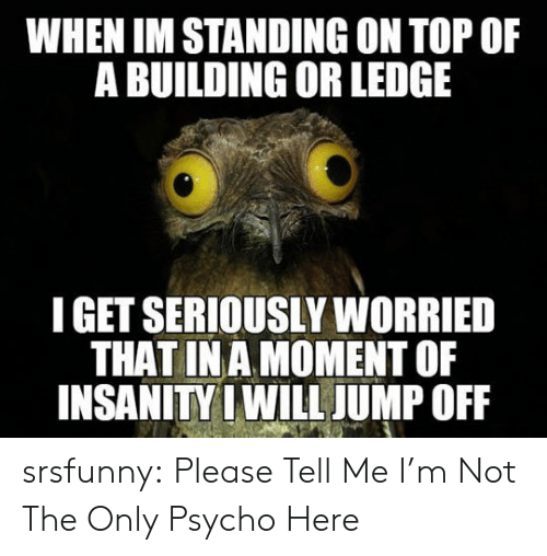 Tumblr, Blog, and Http: WHEN IM STANDING ON TOP OF  A BUILDING OR LEDGE  I GET SERIOUSLY WORRIED  THAT INA MOMENTOF  INSANITY I WILL JUMP OFF srsfunny:  Please Tell Me I'm Not The Only Psycho Here