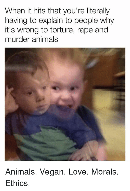 Animals, Love, and Vegan: When it hits that you're literally  having to explain to people why  it's wrong to torture, rape and  murder animals Animals. Vegan. Love. Morals. Ethics.