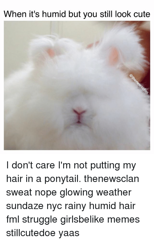 when its humid but you still look cute i dont 1027468 ✅ 25 best memes about humidity hair humidity hair memes