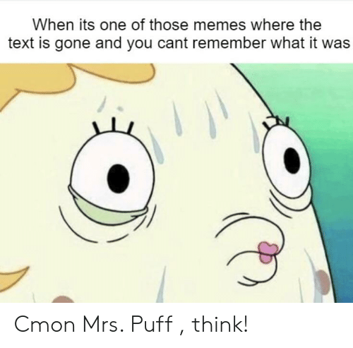 Memes, SpongeBob, and Text: When its one of those memes where the  text is gone and you cant remember what it was Cmon Mrs. Puff , think!