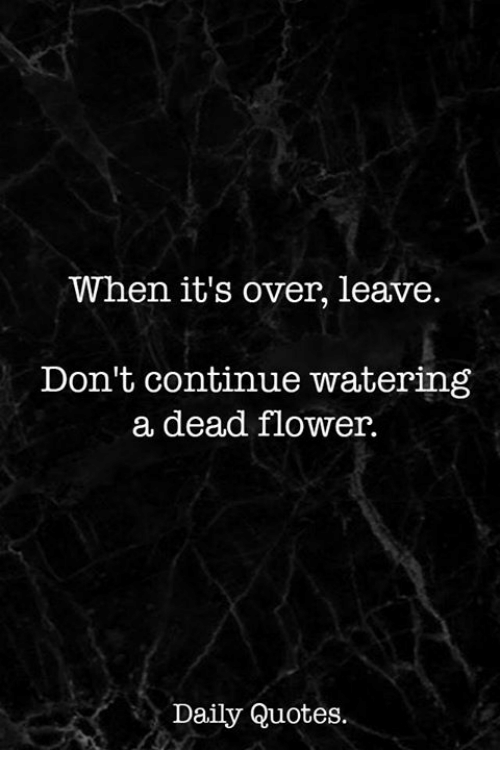 Its Over Quotes When It's Over Leave Don't Continue Watering a Dead Flower Daily  Its Over Quotes
