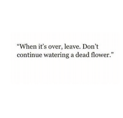 """Flower, Dead, and Continue: """"When it's over, leave. Don't  continue watering a dead flower."""""""
