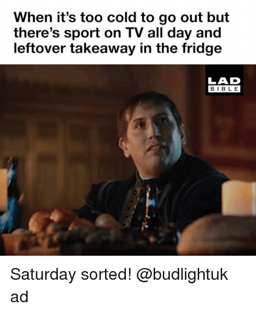Memes, Bible, and Cold: When it's too cold to go out but  there's sport on TV all day and  leftover takeaway in the fridge  LAD  BIBLE Saturday sorted! @budlightuk ad