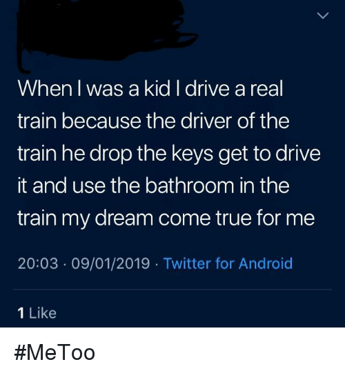 When L Was a Kid I Drive a Real Train Because the Driver of the