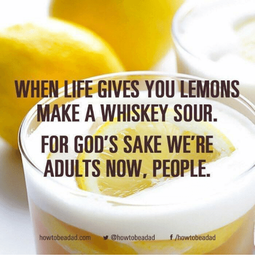 Life, Memes, and 🤖: WHEN LIFE GIVES YOU LEMONS  MAKE A WHISKEY SOUR  FOR GOD'S SAKE WE'RE  ADULTS NOW, PEOPLE.  howtobeadad.com@howtobeadadf /howtobeadad