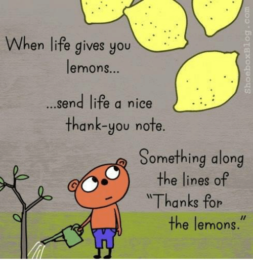 When Life Gives You Lemons Send Life A Nice Thank You Note Something