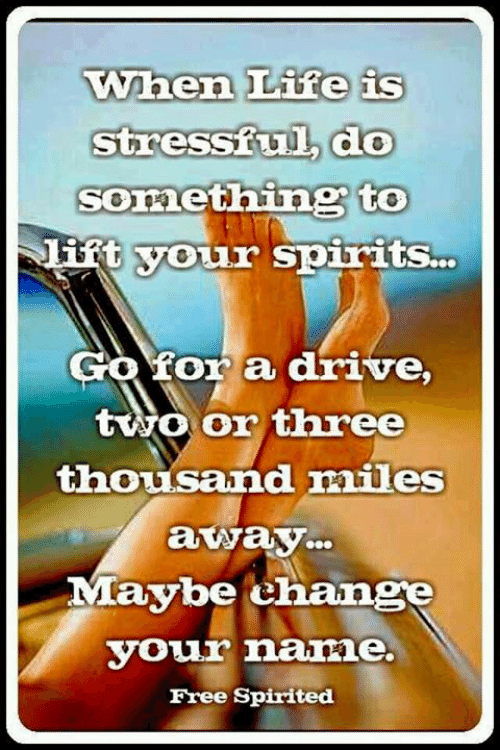 Memes, Drive, and Free: When Lire is  stressiul do  Something to  if  t vour spirits  Gofor a drive,  tvwo Oor three  thousand mies  away  Maybe change  VOwr nane.  Free Spirited