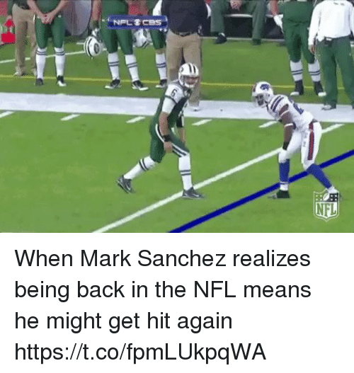 Nfl, Sports, and Mark Sanchez: When Mark Sanchez realizes being back in the NFL means he might get hit again https://t.co/fpmLUkpqWA