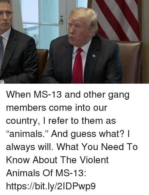 """Animals, Gang, and Guess: When MS-13 and other gang members come into our country, I refer to them as """"animals."""" And guess what? I always will.   What You Need To Know About The Violent Animals Of MS-13: https://bit.ly/2IDPwp9"""