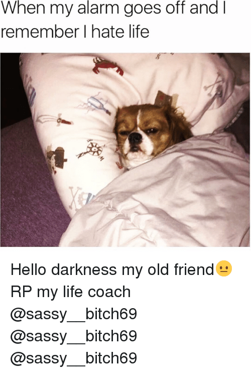 Funny, Hello, and Alarm: When my alarm goes off and  I  remember I hate life Hello darkness my old friend😐 RP my life coach @sassy__bitch69 @sassy__bitch69 @sassy__bitch69