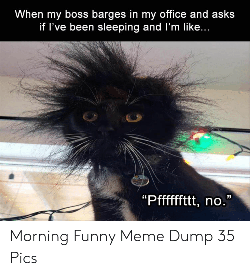 Funny, Meme, and Office: When my boss barges in my office and asks  if l've been sleeping and l'm like... Morning Funny Meme Dump 35 Pics