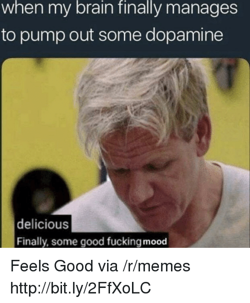 Fucking, Memes, and Mood: when my brain finally manages  to pump out some dopamine  delicious  Finally, some good fucking mood Feels Good via /r/memes http://bit.ly/2FfXoLC