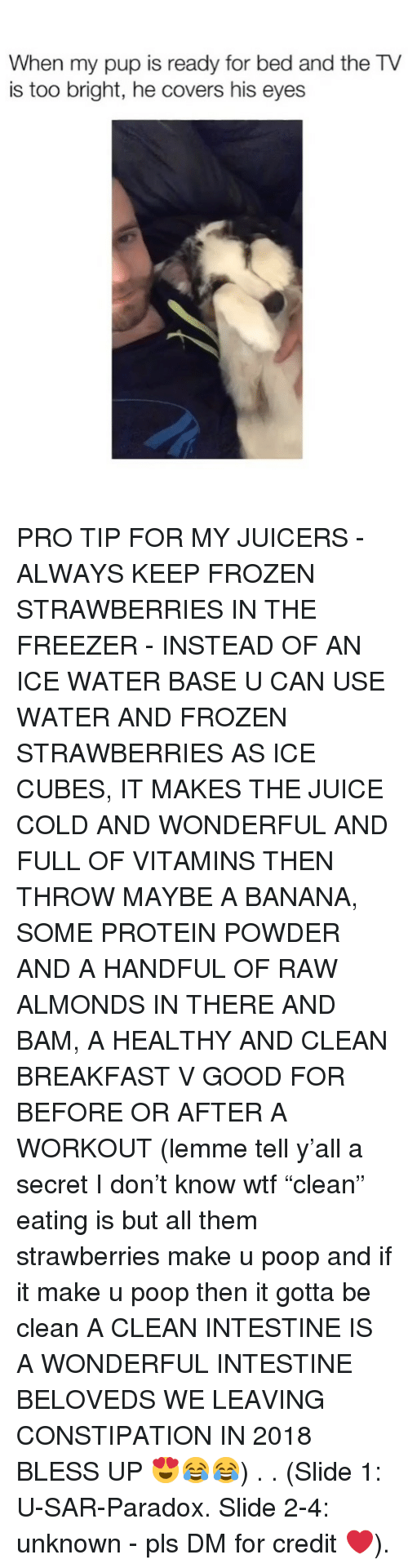 "Bless Up, Frozen, and Juice: When my pup is ready for bed and the TV  is too bright, he covers his eyes PRO TIP FOR MY JUICERS - ALWAYS KEEP FROZEN STRAWBERRIES IN THE FREEZER - INSTEAD OF AN ICE WATER BASE U CAN USE WATER AND FROZEN STRAWBERRIES AS ICE CUBES, IT MAKES THE JUICE COLD AND WONDERFUL AND FULL OF VITAMINS THEN THROW MAYBE A BANANA, SOME PROTEIN POWDER AND A HANDFUL OF RAW ALMONDS IN THERE AND BAM, A HEALTHY AND CLEAN BREAKFAST V GOOD FOR BEFORE OR AFTER A WORKOUT (lemme tell y'all a secret I don't know wtf ""clean"" eating is but all them strawberries make u poop and if it make u poop then it gotta be clean A CLEAN INTESTINE IS A WONDERFUL INTESTINE BELOVEDS WE LEAVING CONSTIPATION IN 2018 BLESS UP 😍😂😂) . . (Slide 1: U-SAR-Paradox. Slide 2-4: unknown - pls DM for credit ❤️)."