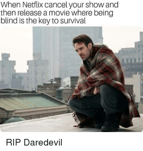 Netflix, Daredevil, and Movie: When Netflix cancel your show and  then release a movie where being  blind is the key to survival RIP Daredevil