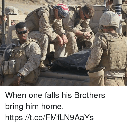 Memes, Home, and 🤖: When one falls his Brothers bring him home. https://t.co/FMfLN9AaYs