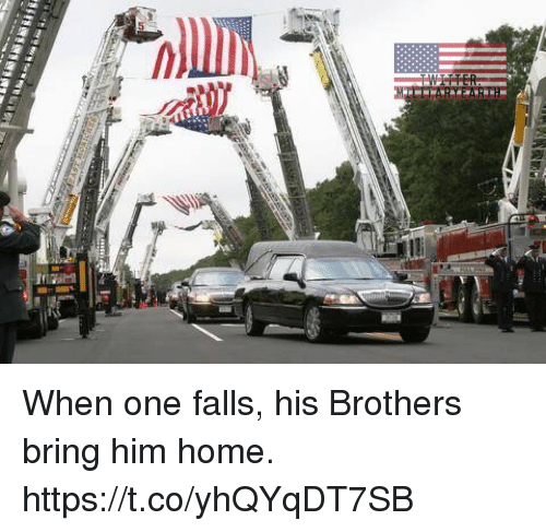 Memes, Home, and 🤖: When one falls, his Brothers bring him home. https://t.co/yhQYqDT7SB